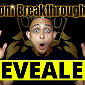 Freedom Breakthrough 2.0 - Quit Your 9 To 5 Job - Achieve Financial Freedom in Less Than 12 Months